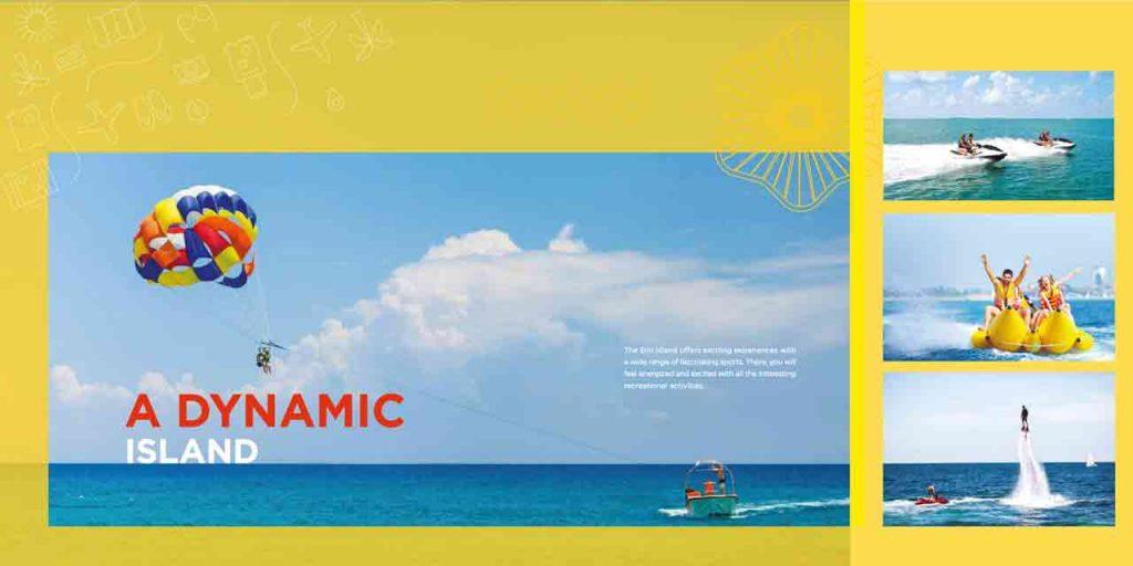 A DYNAMIC ISLAND